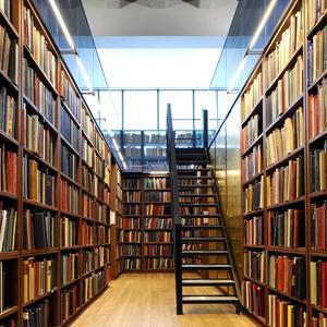 Библиотеки Гая